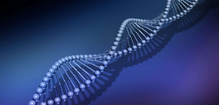 Techniques de modification du génome : jusqu'où ira t-on ?