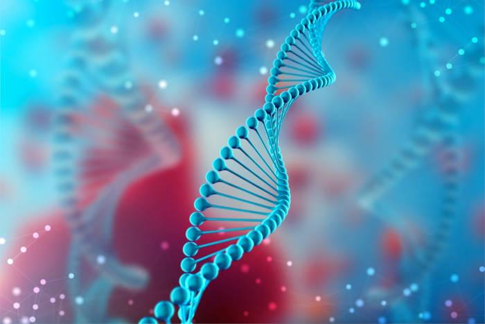 Algentech obtient un brevet stratégique aux États-Unis pour une technologie clé d'édition du génome