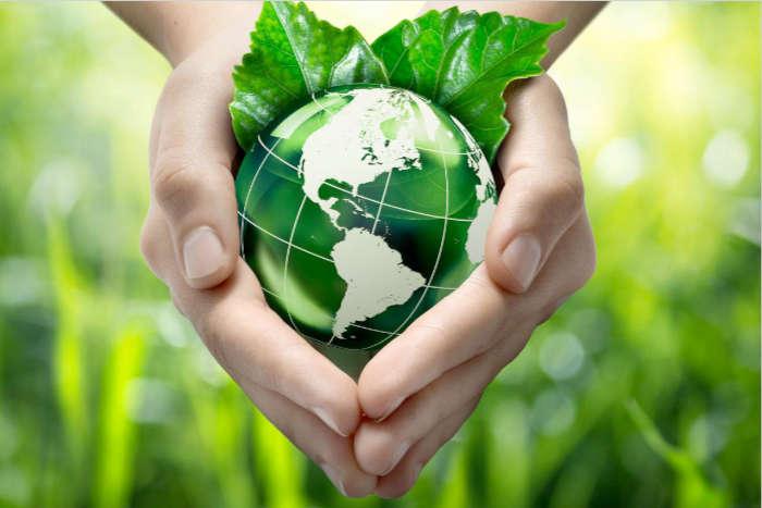 Compte-rendu – Bioéconomie : risques et enjeux d'un recours croissant aux biomasses