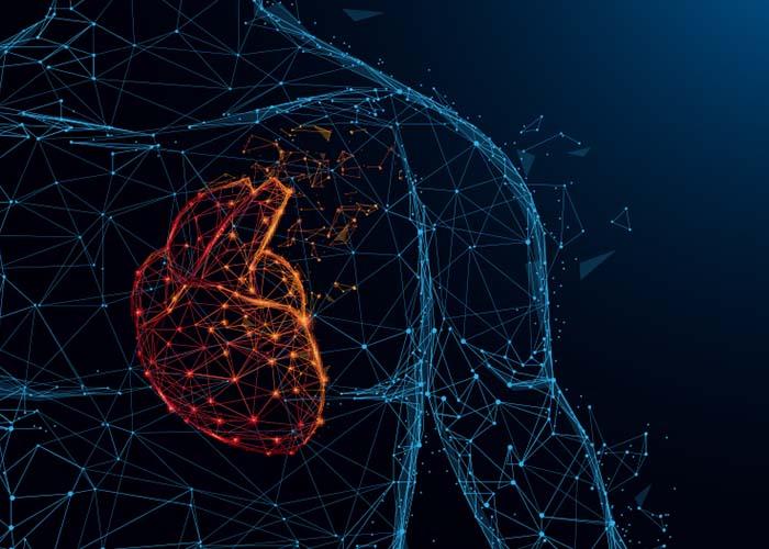 Invitation presse : Un implant innovant pour le traitement d'insuffisances cardiaques