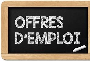 offre d'emploi-f83389f2