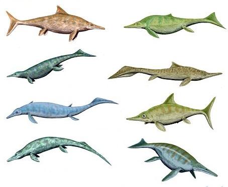 ANNULE : Petit déjeuner virtuel sur les reptiles marins du temps des dinosaures mais qui ne sont pas des dinosaures (les ichthyosaures par exemple)
