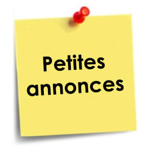 petites-annonces-icone-1cddd012