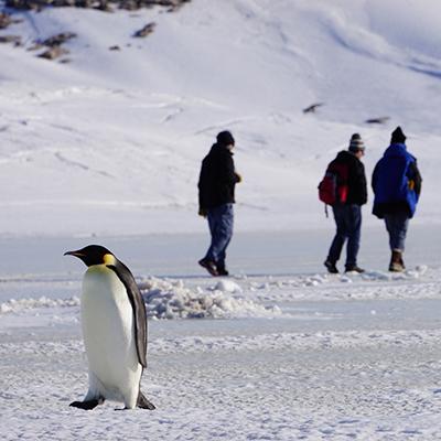 Conférence de presse CNRS/Institut polaire français - L'Antarctique, terre de sciences