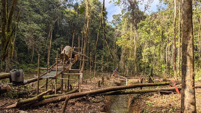 L'Amazonie - 1 heure avec F-M Le Tourneau